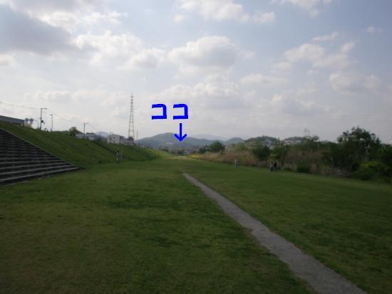 CIMG04910.JPG