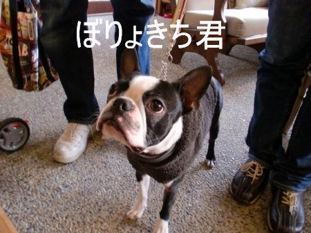 boryokiti_1.jpg